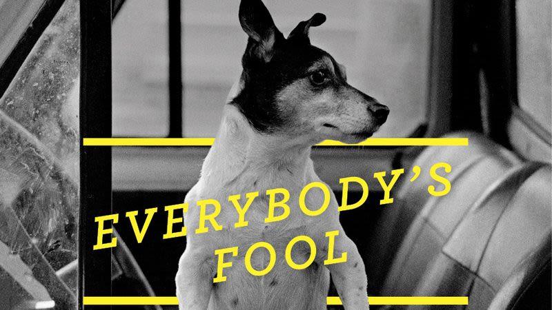 Everyone's Fool