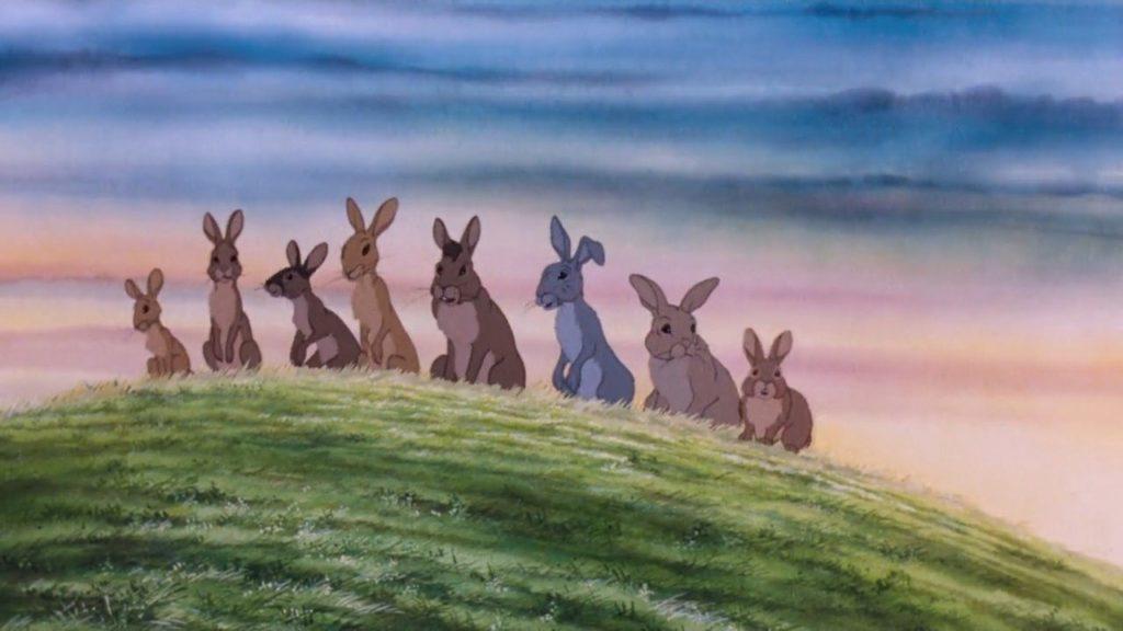 Watership Down rabbits photo